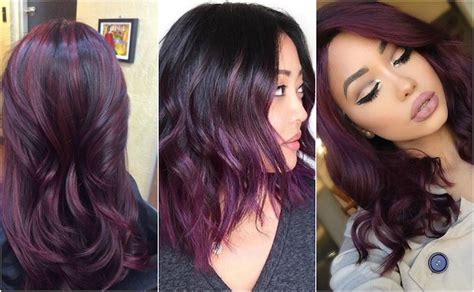 black plum hair color everything you need to about plum hair dailybeautyhack