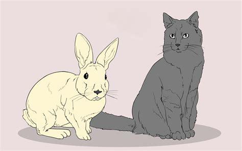 doodle wiki how 3 ways to draw animals wikihow