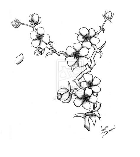 black and white cherry blossom tattoo cherry blossom 2 by alexdicko deviantart on