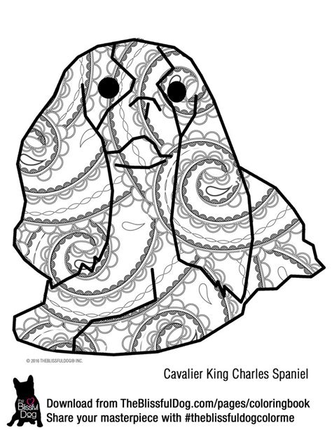 coloring pages of cavalier king charles spaniels cavalier king charles spaniel coloring page sketch