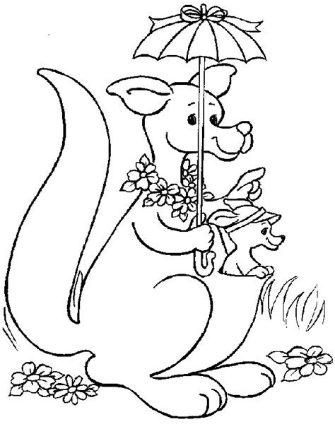 coloring pages for kangaroo kangaroo coloring pages for kids coloring home