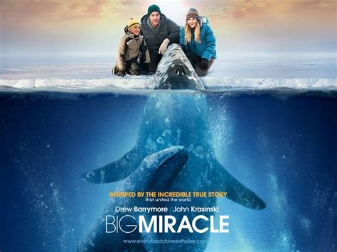 The Big Miracle Free Big Miracle 2012 Free Ripped