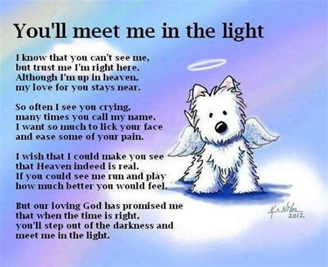 pets in heaven gift for owners all dogs go to heaven quotes and poem puppies poems pet loss quotes and
