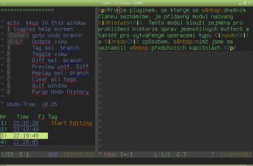 Pro Vim tvorba plugin絲 pro vim s vyu緇it 237 m programovac 237 ho jazyka