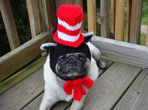pug hats pug hats 1funny