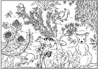 australian animal fusebead patterns