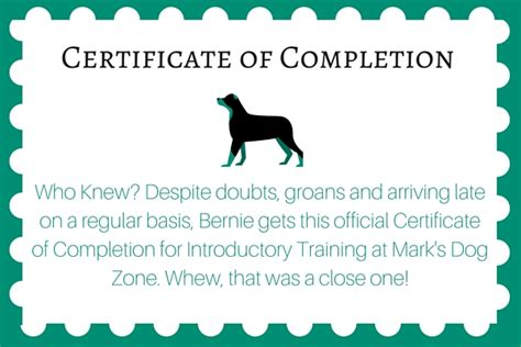 creating a memorable volunteer certificate paperdirect blog