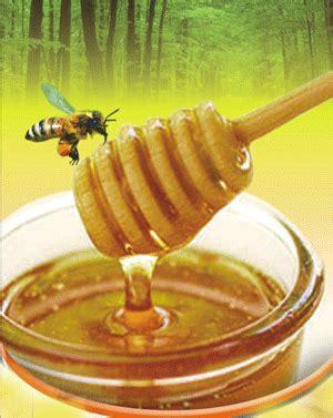 Murah Madu Arab Murni Madu Kesehatan Menjaga Stamina madu asli banyuwangi madu asli manfaat madu madu murni