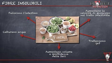 alimenti con fibre insolubili fibre alimentari cosa sono project invictus