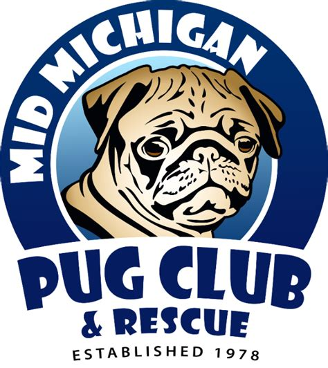 mid michigan pug club mid michigan pug club