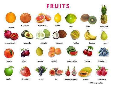 a z name that fruit and vegetable books fruit and vegetables pictures learning