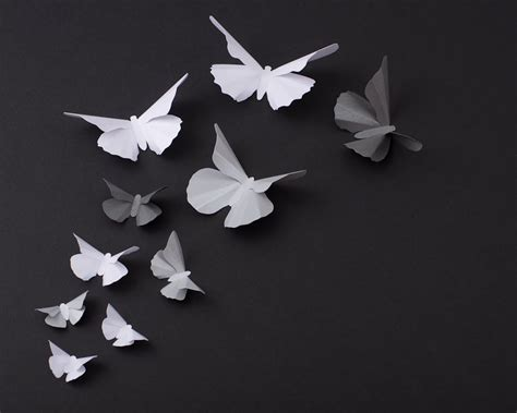 Silver Butterflies Decoration by 3d Butterfly Wall Metallic Silhouettes For Room