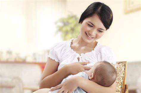 Manset Untuk Ibu Menyusui makanan dengan nutrisi penting penunjang gizi ibu menyusui