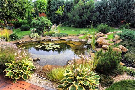 Pour Bassin by Bassins Jardin Jardiland