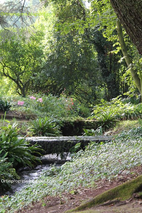 irrigazione giardino irrigazione giardino awesome tubo di irrigazione per