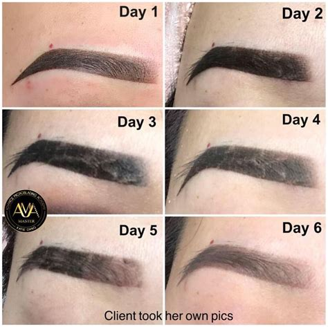 ombre brows healing stages  class santaana hawaii