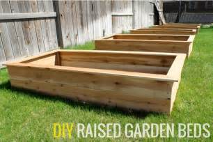 wheelchair accessible raised garden beds