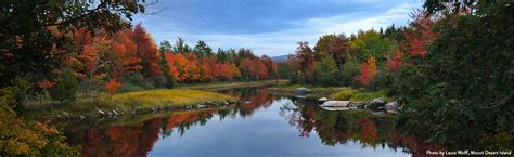 fall colors in maine mainefoliage maine s official fall foliage website
