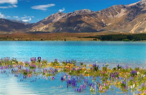 Nouvelle Zélande Lonely Planet