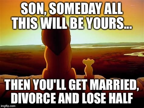 Divorce Memes - lion king meme imgflip