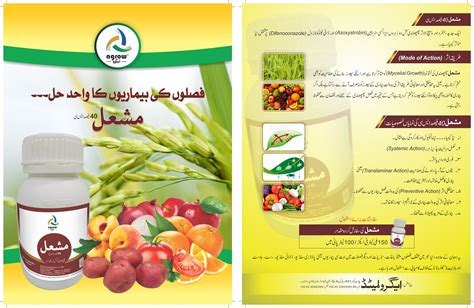 Potato Program by Potato Program Brochure Agrow