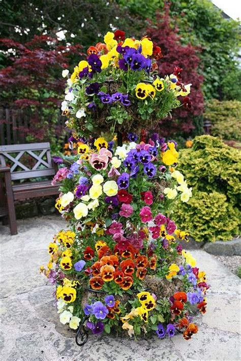 Pansies Towers And Flower On Pinterest Pansy Garden Ideas