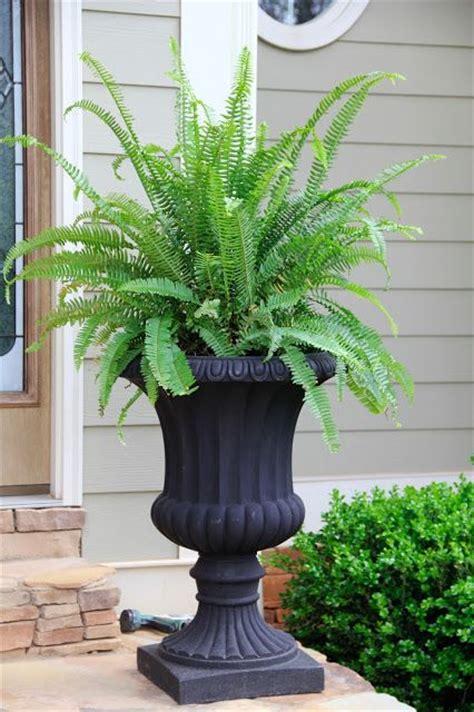 25 best ideas about urn planters on garden