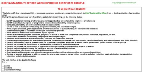 Chief Experience Officer by Office Receptionist Work Experience Certificates