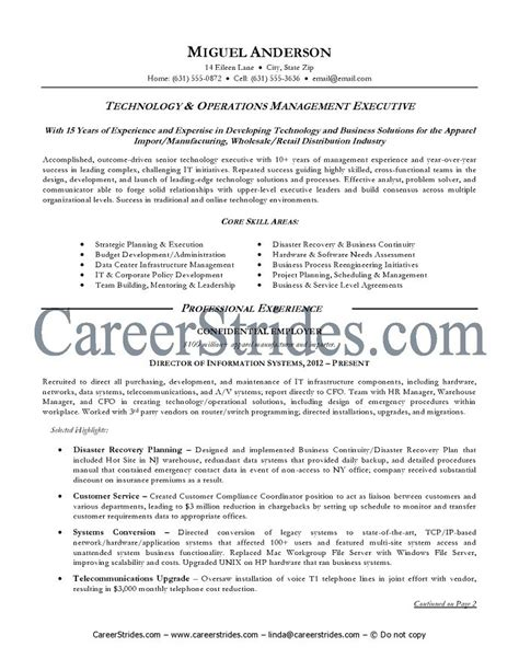 Technology Resume Template information technology resume sle information
