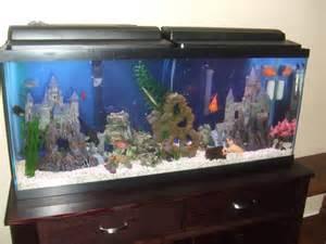20 gallon fish tank 50   Top Fin 50 Gallon Hooded Aquarium   Aquariums