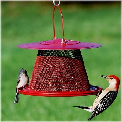 17 best images about seed bird feeders on pinterest