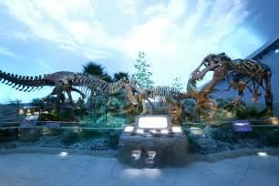 Dinosaur Wall Mural tiere dinosaurier wallpaper