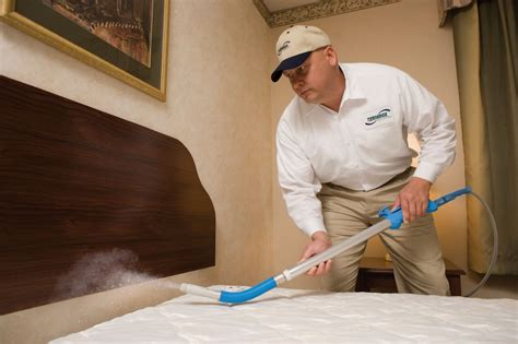 bed bug exterminators bed bug control services london exterminators removal