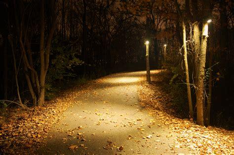 outdoor driveway lighting fixtures driveway lighting fixtures types of driveway light