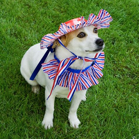 yankee doodle doggie flowers ilovetocreate 20 patriotic craft diys