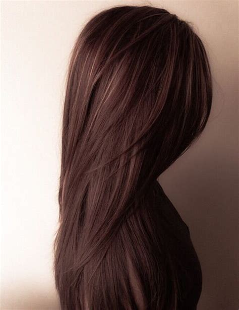hair colors pictures best 25 brown hair colors ideas on