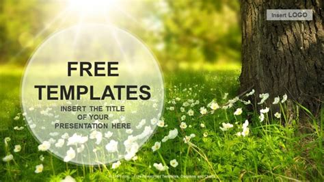powerpoint template nature flowers meadow nature ppt
