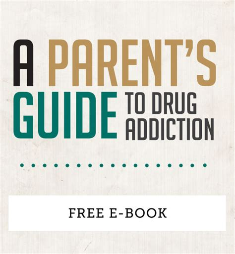 the family addiction guidebook books iaddiction a parents guide to addiction e book iaddiction