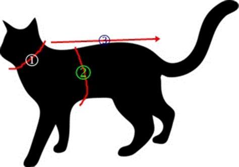 Meteran Badan Baju Untuk Penjahit Yc44 yuk menjahit baju kucing anjing sendiri la femme 233 crit