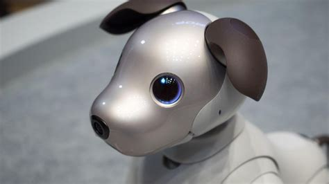 sony robots for sale sony s new aibo robot dog can be yours for a whopping
