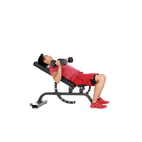 neutral grip incline dumbbell bench press neutral grip dumbbell incline bench press video watch