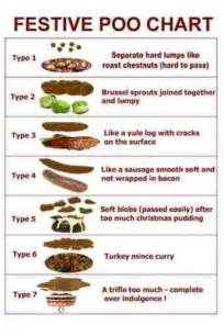 bowel movement color chart bristol stool chart nursey humour festive