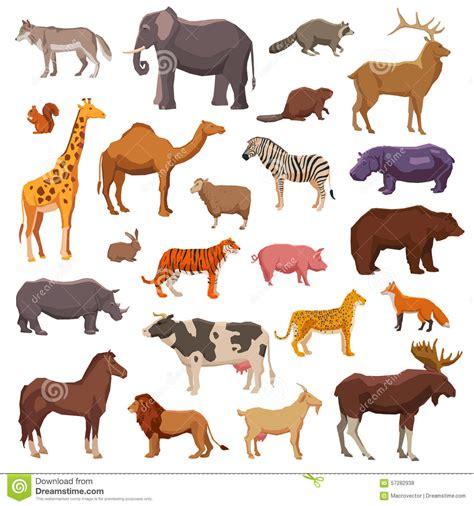 Animal Set big set of animals vector vector