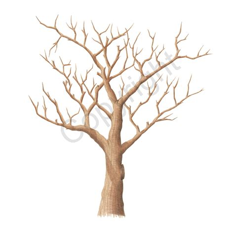 thumbprint tree template coachwood the fingerprint tree 174