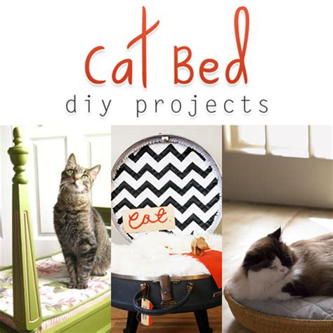 diy cat beds cat bed diy projects the cottage market