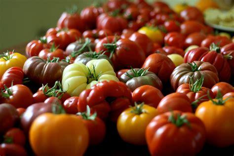 patio tomatoes to grow sanctuary soil