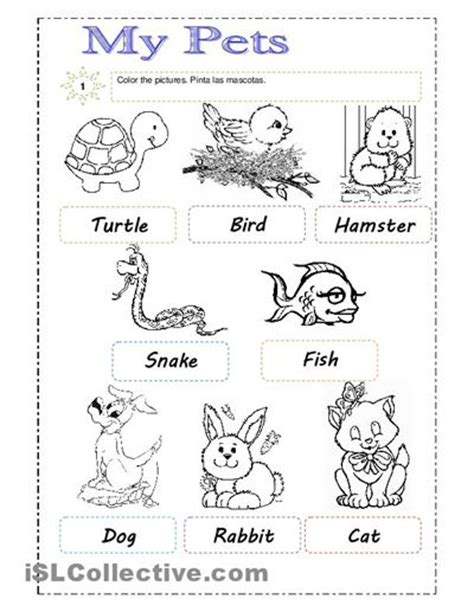 identifying themes in film 33 best images about pet worksheets on pinterest