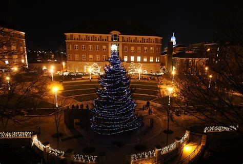 college christmas 17 best images about dayton on sporty daily news and of dayton