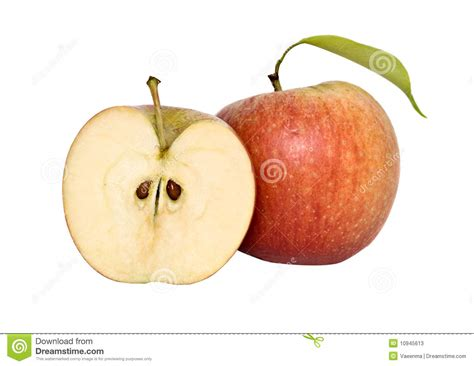 Apple And Its Cross Section Stock Photos Image 10945613