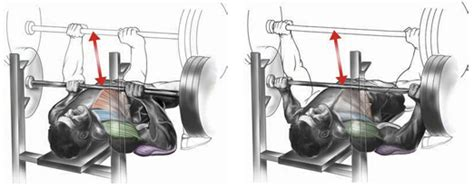bench press wide or narrow grip chest bo dy com